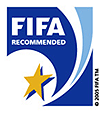 fifa-one-star-100